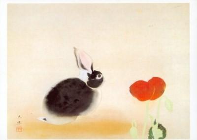 Togyu, Okumura. Kaninchen. KK