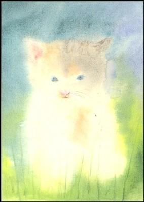 Dorothea Schmidt. Kleine Katze. KK