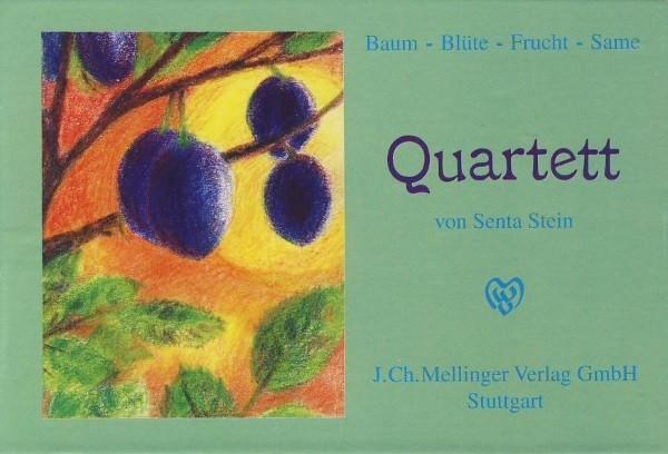 Senta Stein. Naturquartett, Baum-Blüte-Frucht-Same ab 5 J.