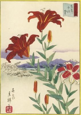 Utagawa Hiroshige. Lilien