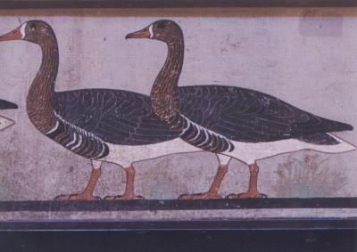 Gänse von Medum, 2900 bis 2200 v. Chr.