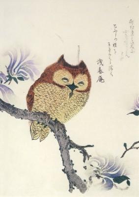 Kubo Shunman. Eule auf einem Magnolienzweig